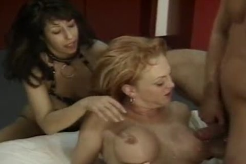 busty tranny Hooker Olivia Love With Flamboyant Colour Hair  Sucksmultiple cocks And acquire came After sexy butthole  Saturnalia
