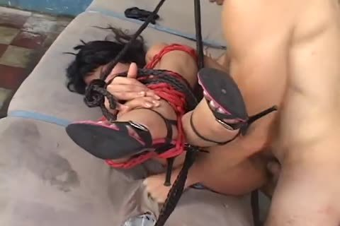 bound transsexual fucked Hard In indecent anal  hole